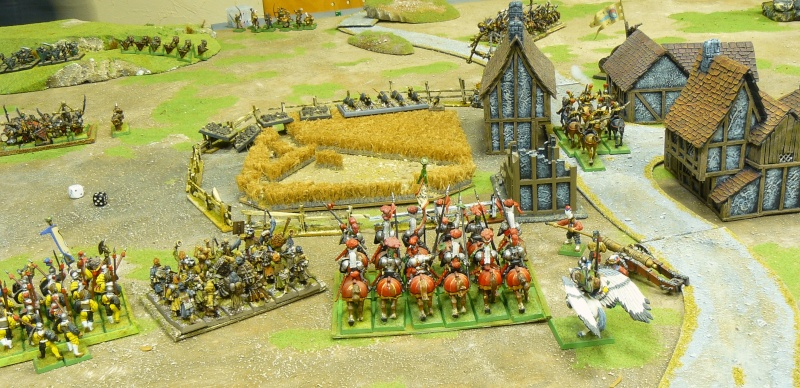 Warhammer Fantasy, Galerie de Batailles P1180052