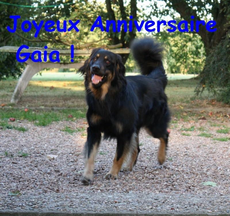 Gaia du Pre de Califourny,Titus et Tania des Bois de Piron(pixs)! - Page 6 Itac0110