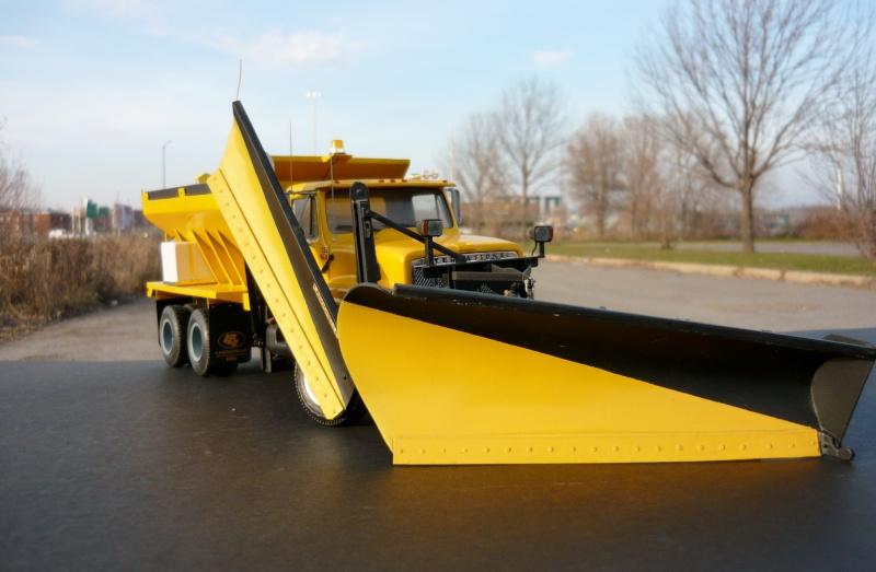 international serie S avec équipement  à neige P1100255