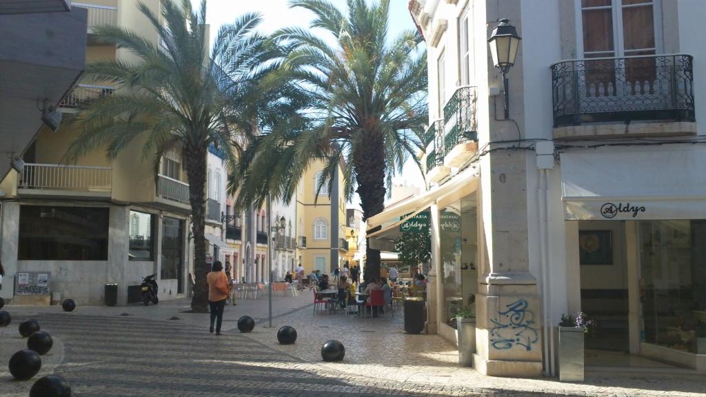 bonjour du Portugal [josé] 100_0610