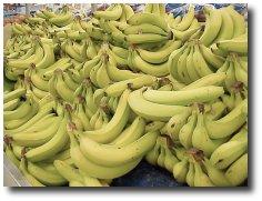 Less bienfaits de la banane Alimen13