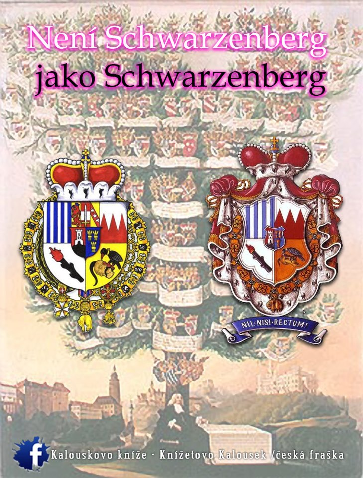Karel Schwarzenberg 62920_10