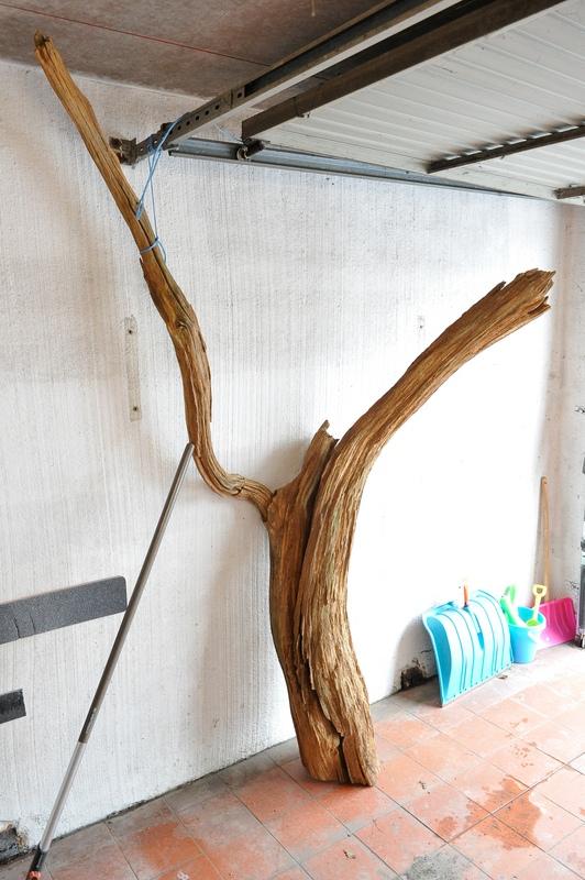 traitement tronc d 39 arbre. Black Bedroom Furniture Sets. Home Design Ideas