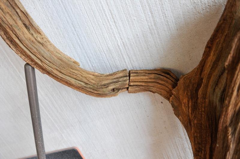 Traitement tronc d'arbre 20130117