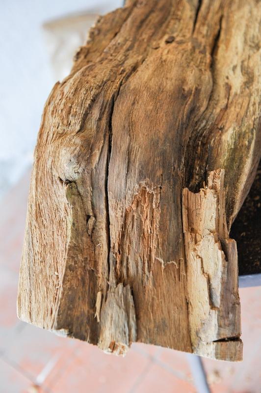 Traitement tronc d'arbre 20130121