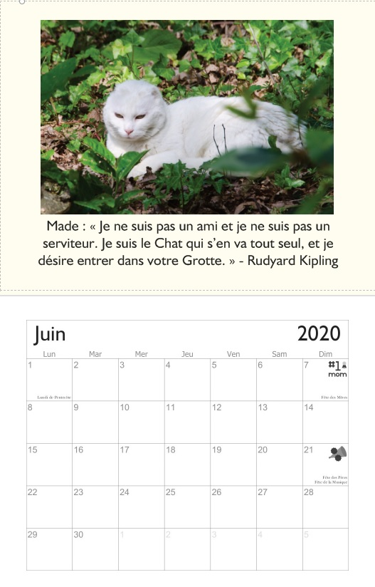 calendrier 2020 Juin2012