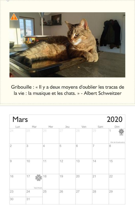 Gribouille, femelle type européenne tabby née le 10/04/2017 - Page 4 Mars2012