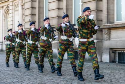La ZM-FN / Marine monte la garde au Palais Royal à Bruxelles - Page 5 Gr10