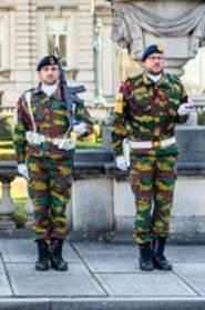 La ZM-FN / Marine monte la garde au Palais Royal à Bruxelles - Page 5 Gr110