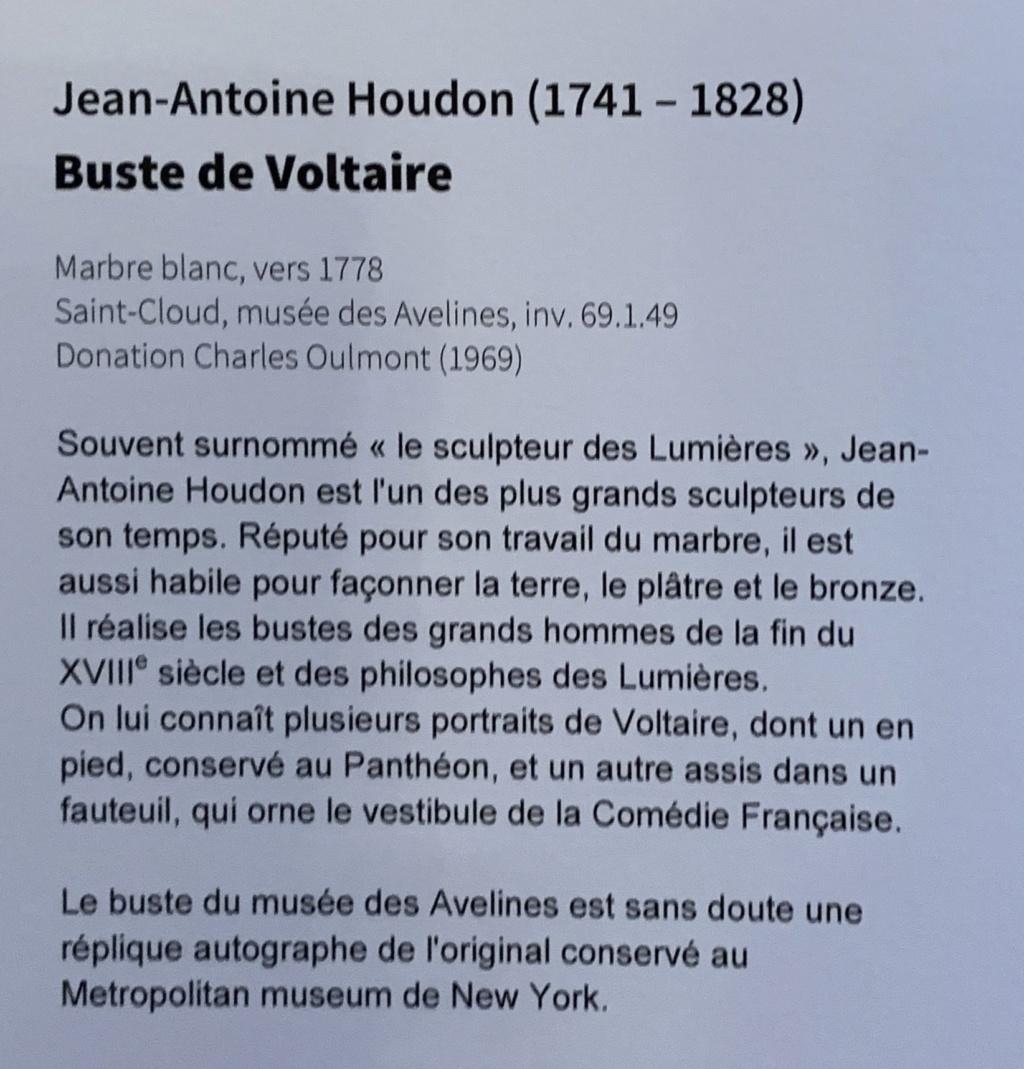 Le Siècle de Louis XIV, Voltaire historien de la modernité 7a9f3210