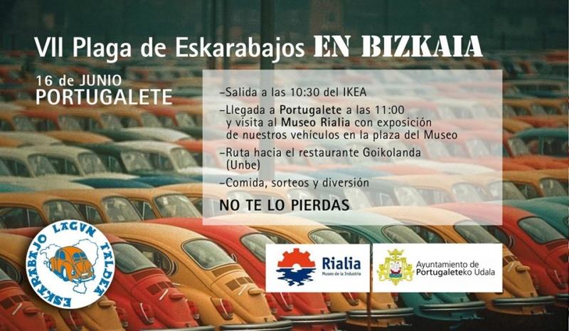 VII Plaga de eskarabajos en Bizkaia (16 junio 2019) Plaga10
