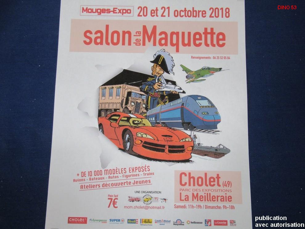 MAUGES - EXPO  13ème Edition les 20 et 21 Octobre 2018 à CHOLET  Img_0844