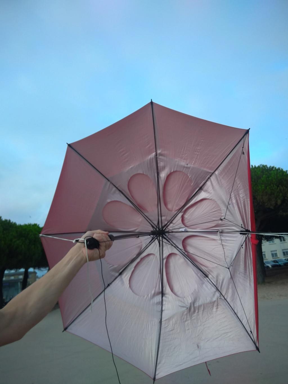 Mon parapluie modifié... (Paravo? ) - Page 2 Img_2016