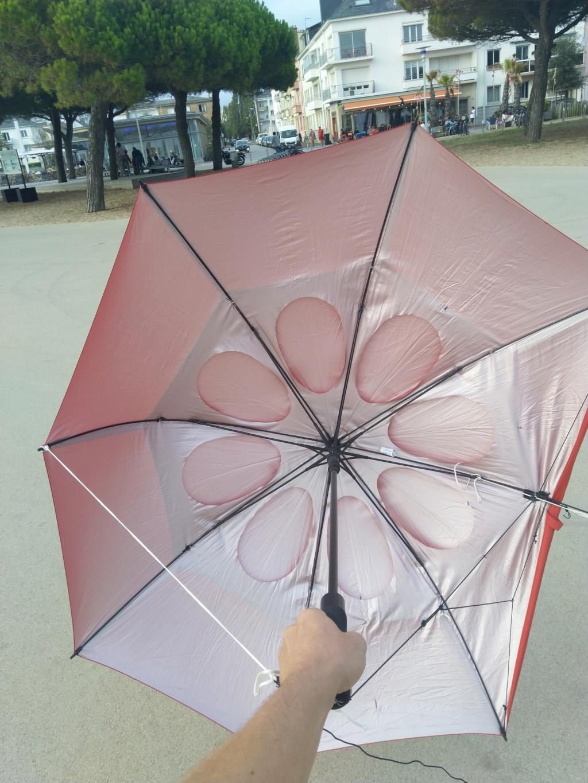 Mon parapluie modifié... (Paravo? ) - Page 2 Img_2017