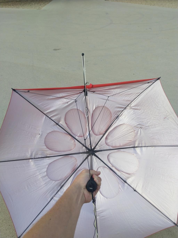 Mon parapluie modifié... (Paravo? ) - Page 2 Img_2018