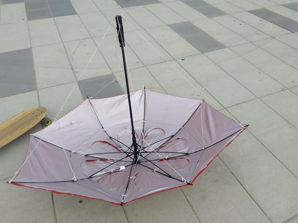 Mon parapluie modifié... (Paravo? ) - Page 2 Img_2023