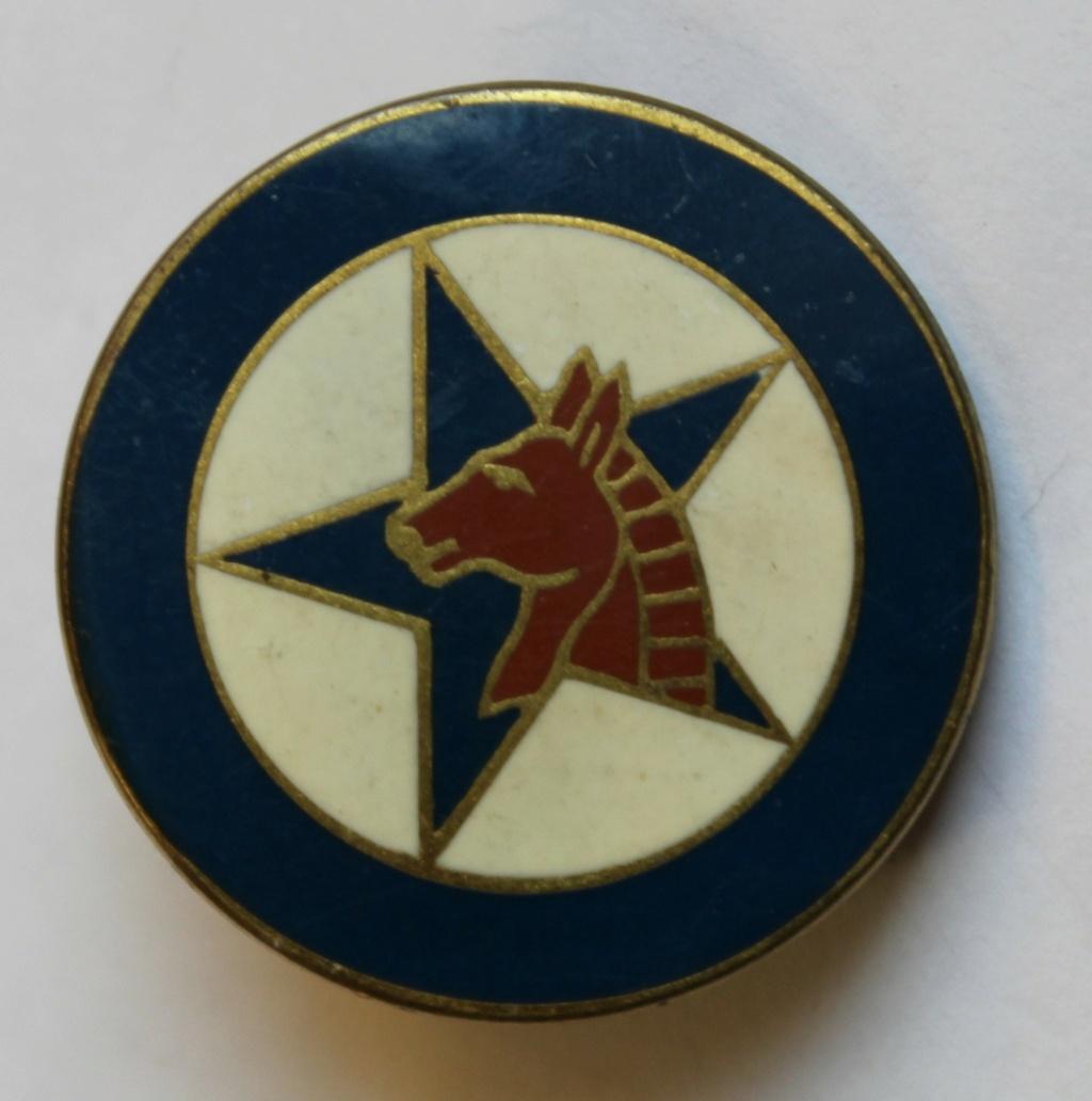 insigne tête de cheval Croix Drago à identifier Img_2910