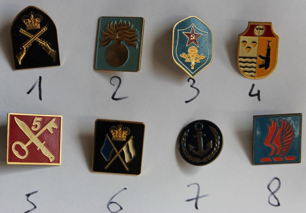 10 pins insigne à identifier Img_3111