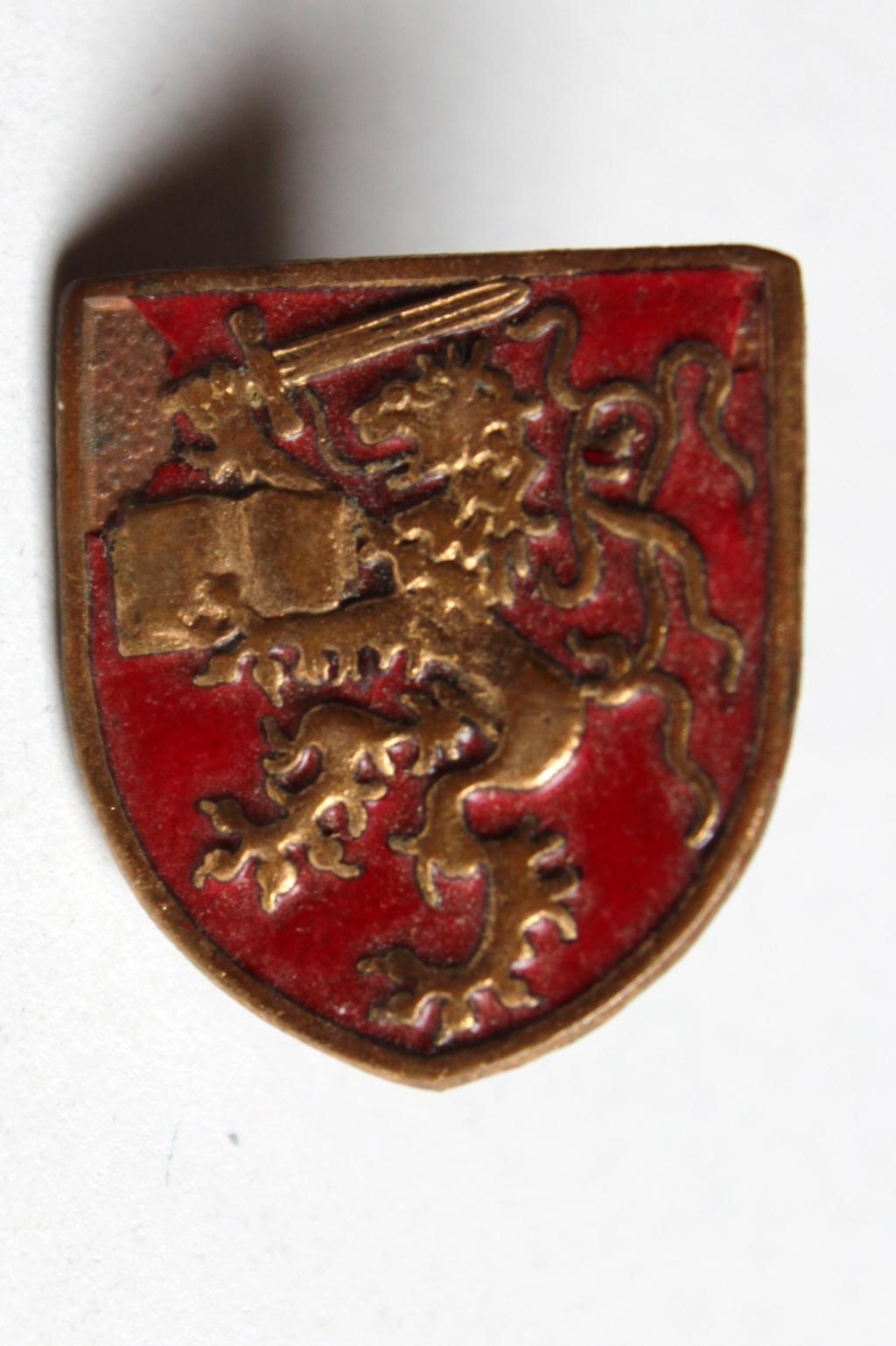 insigne dragon à identifier Img_4510