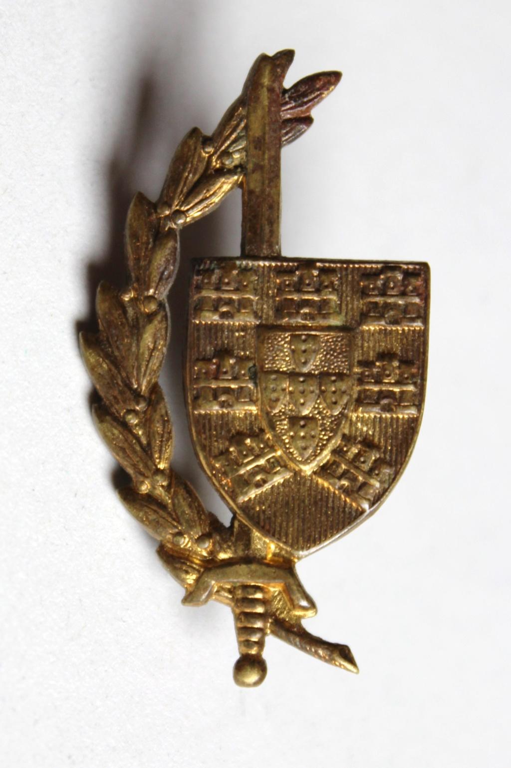 insigne glaive bouclier à identifier Img_4513