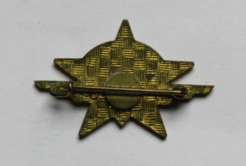 insigne 1 RCP régiment parachutiste Img_6210