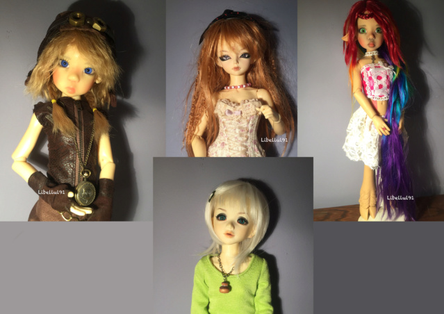 Libellul91's Family... -  Amande (CDR) - Soso - Medium10