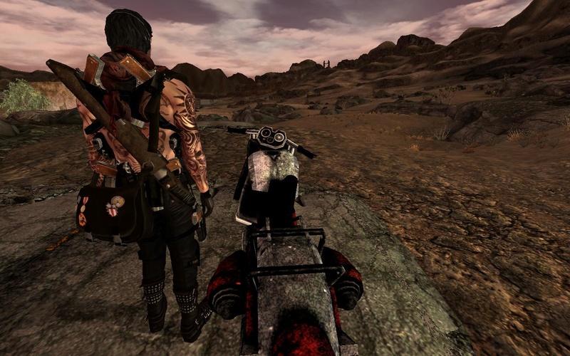 Fallout Screenshots XIII - Page 4 Fallou13