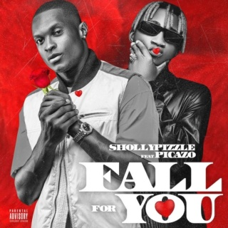 [Music] Shollypizzle – 'Fall For You' Ft. Picazo | Mp3 948c8d10