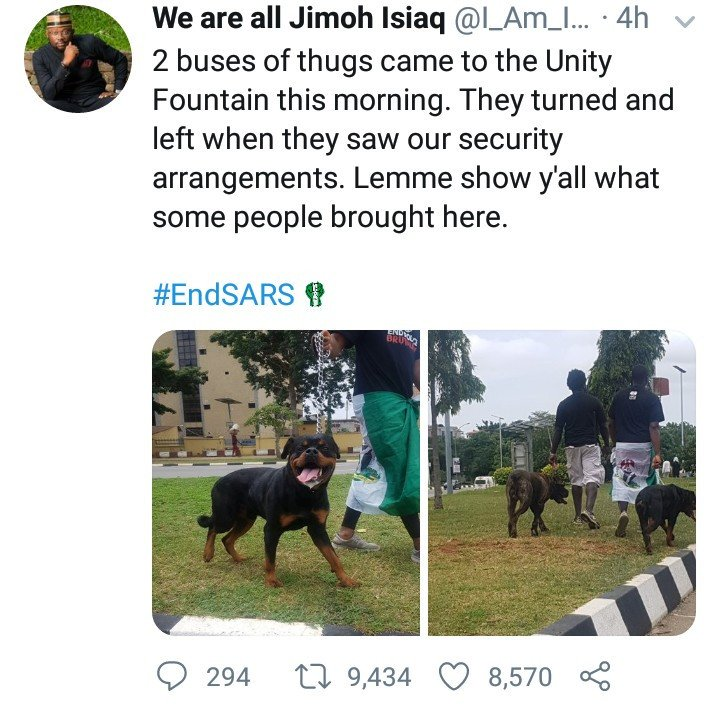 Thugs Allegedly Back Down After Abuja #EndSars Protesters Brought Fierce Dogs To Protect Them Endsar20