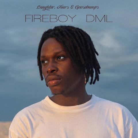 "Fireboy - DOWNLOAD NOW » ""Fireboy DML – Laughter, Tears & Goosebumps"" Full Album Is Out Firebo21"