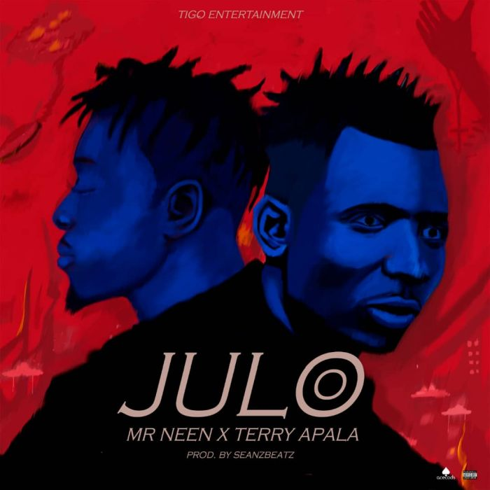 Mr Neen x Terry Apala – Julo | 9Jatechs Music Mp3  Img-2163
