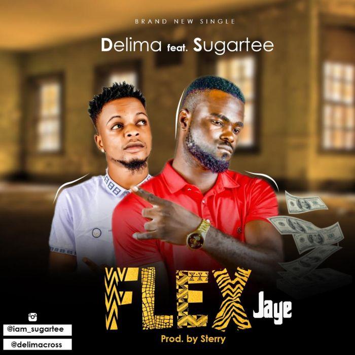"Delima – ""Flex (Jaiye)"" Ft. Sugartee | 9Jatechs Music Mp3 Img-2187"