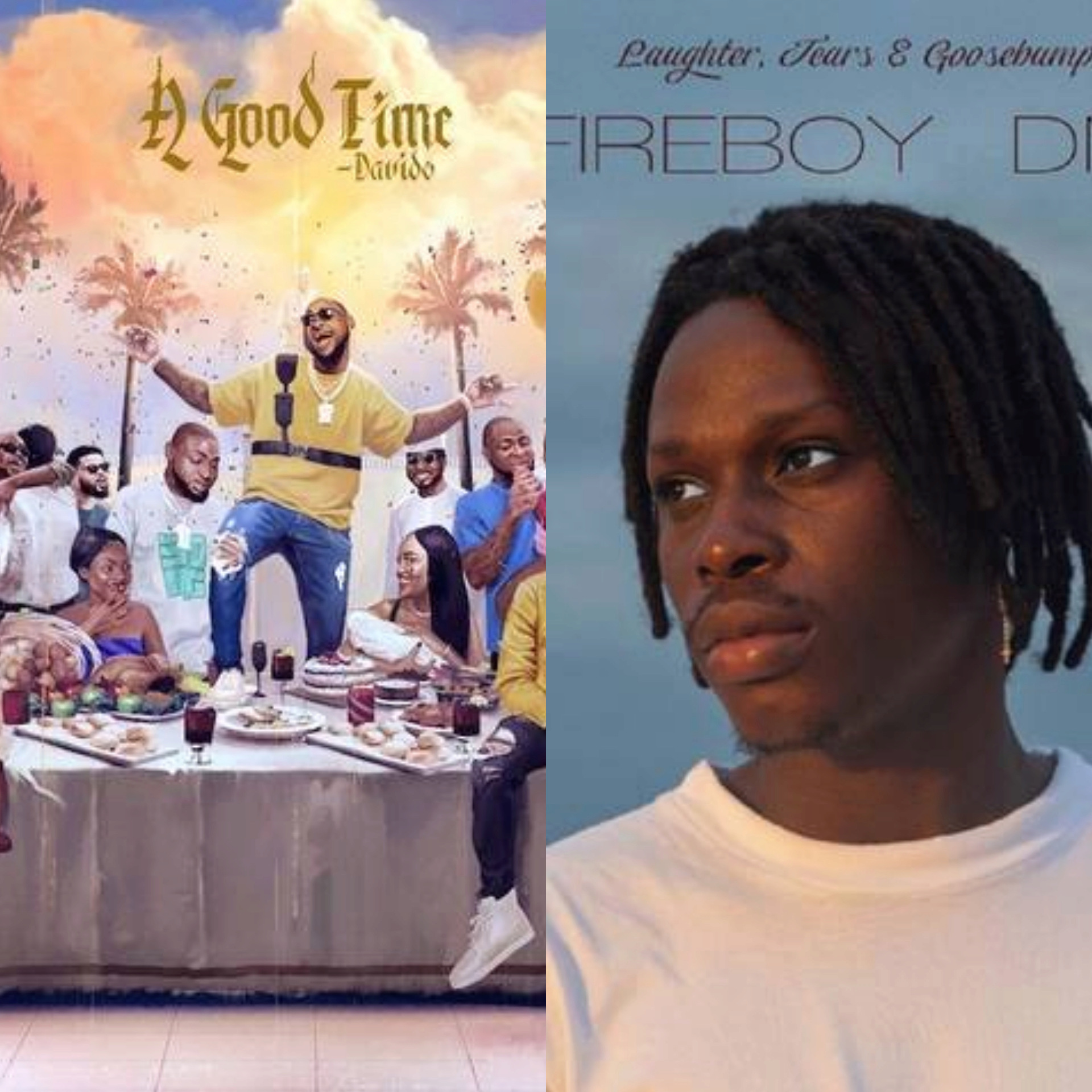 "Is Fireboy's ""Laughter, Tears & Goosebumps"" Album Really Better Than Davido's ""A Good Time"" Album? Insho170"