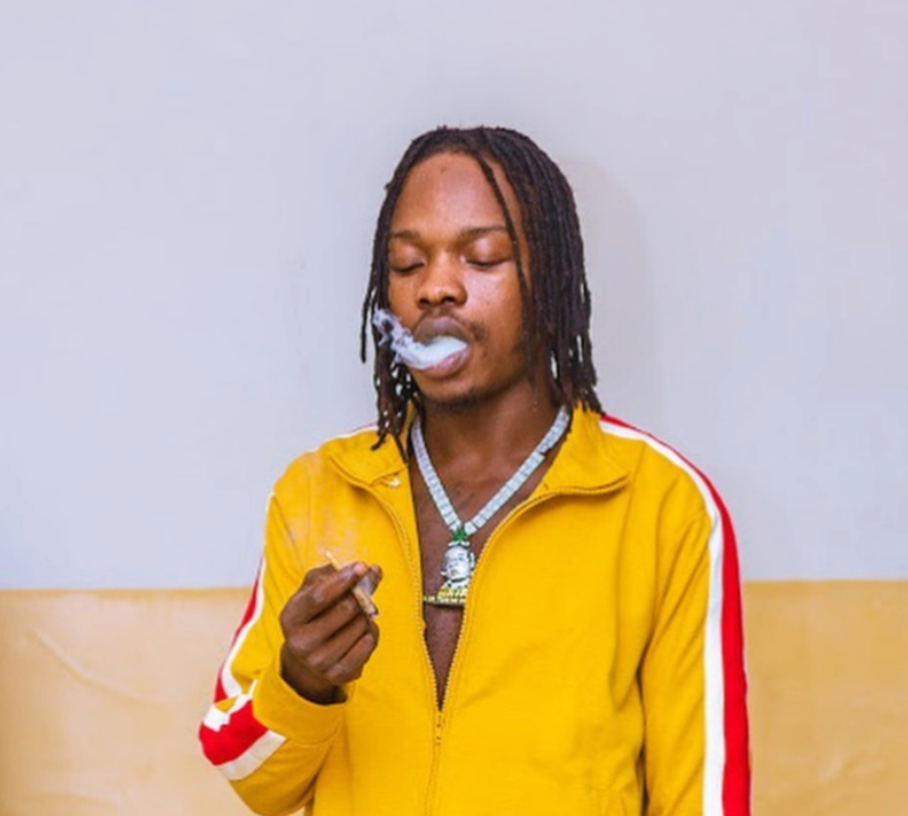 """Girls That Give Threesome With Their Friend Have A Special Place In Heaven"" – Naira Marley Insho401"