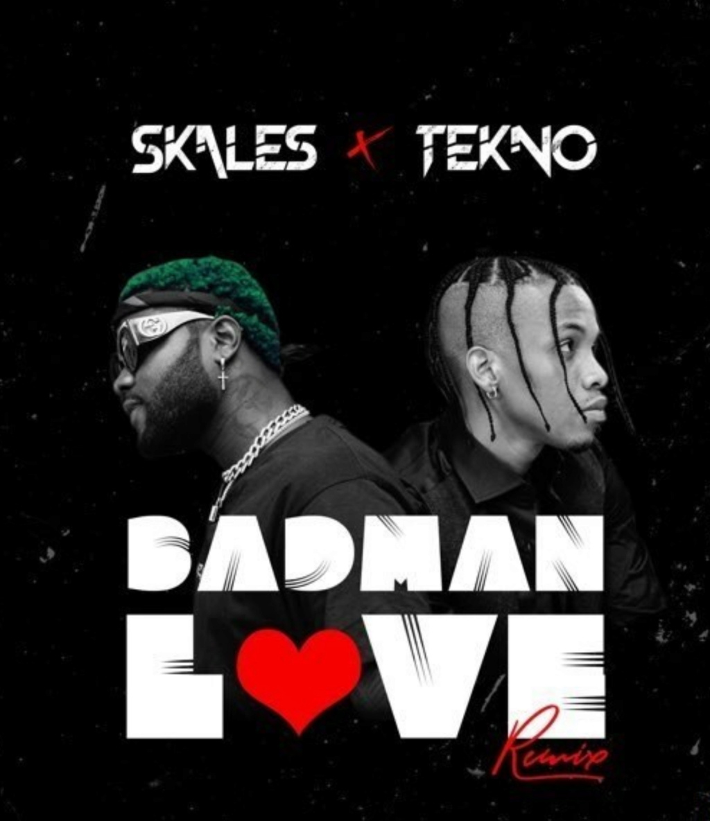 [Music] Skales – Badman Love (Remix) ft. Tekno | Download Mp3 Insho514