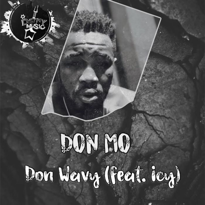 [Download Music] Don Mo Ft. Icey – Don Wavy Music_21