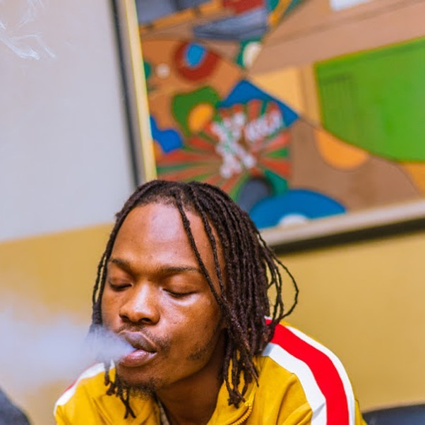 EndSARS!!! Nigeria Police Force Partner With Naira Marley Nairam15