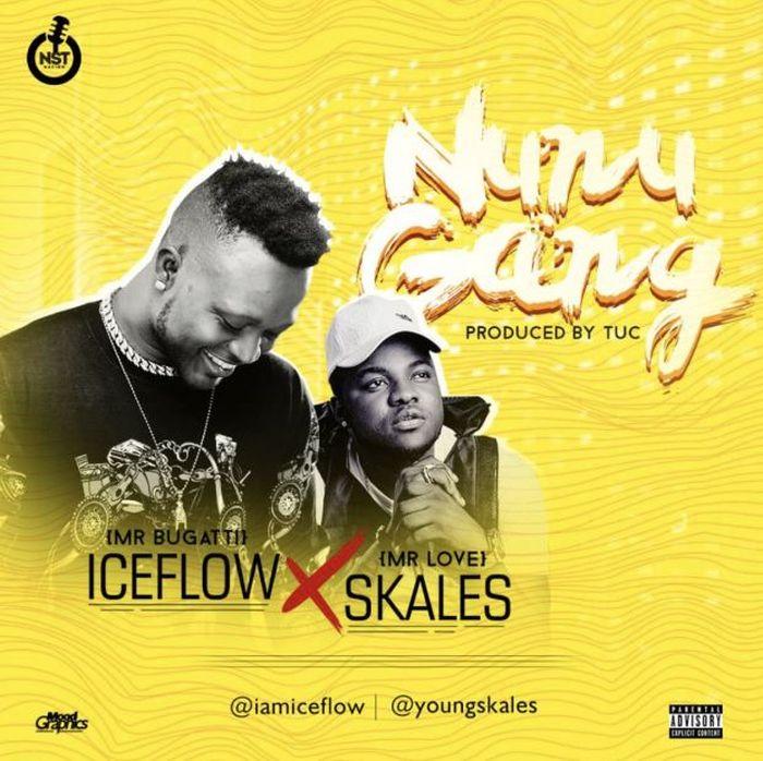 [Download Music] Iceflow Ft. Skales – Nunu Gang Nunu10