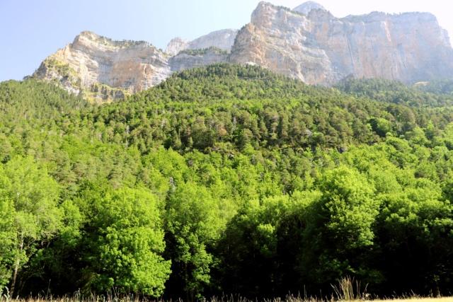 PIRINÈUS - Route Historique du Tour Img_3316