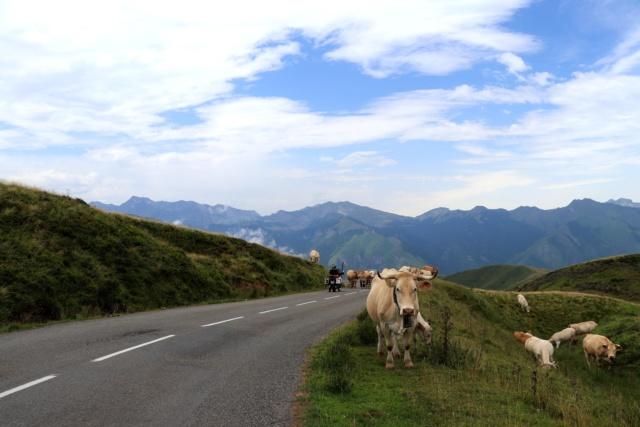 pirineus - PIRINÈUS - Route Historique du Tour Img_3622