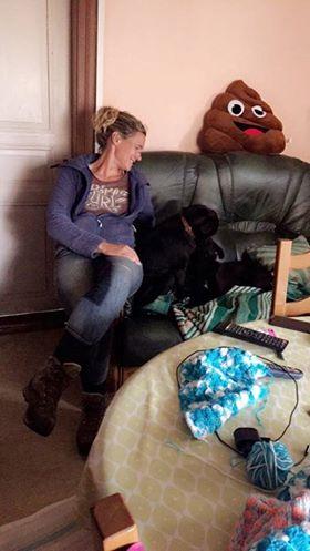 JONNY magnifique croisé labrador noir - en FA dpt 67  36778510