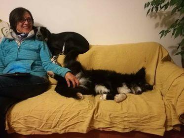 TESS & SHIVA 2 soeurs dans le besoin - BULGARIE 45723510