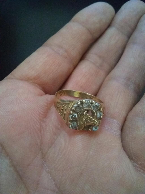 Mi primer hallazgo de oro  Img_2010
