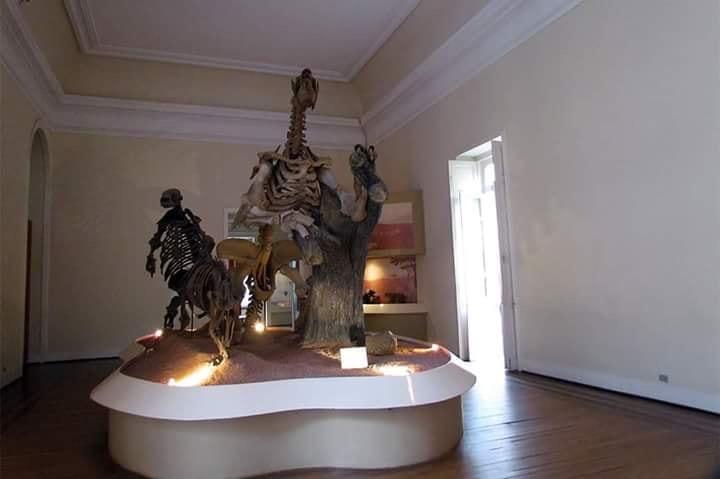 Musée national de Rio de Janeiro en feu  61a8b310