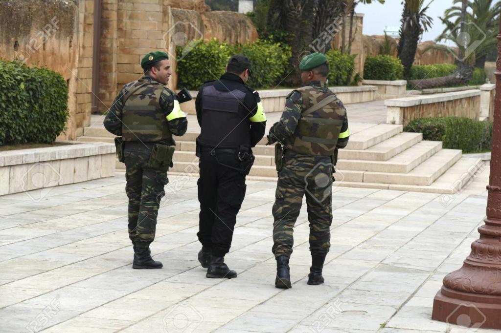 Photos de nos soldats et des Bases Marocaines - Page 7 11817910
