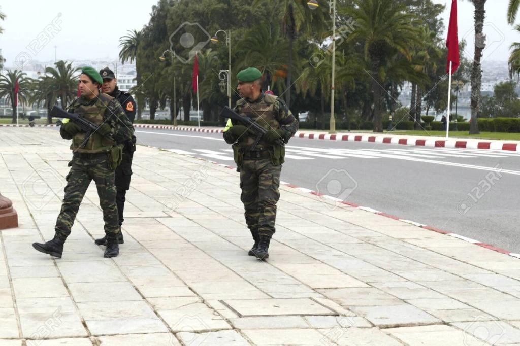 Photos de nos soldats et des Bases Marocaines - Page 7 11817911