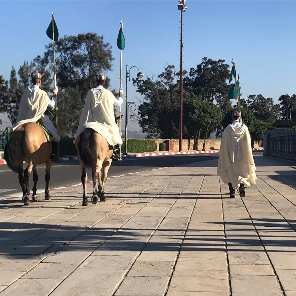 La Garde Royale Marocaine / Moroccan Royal Guard - Page 11 Colore10