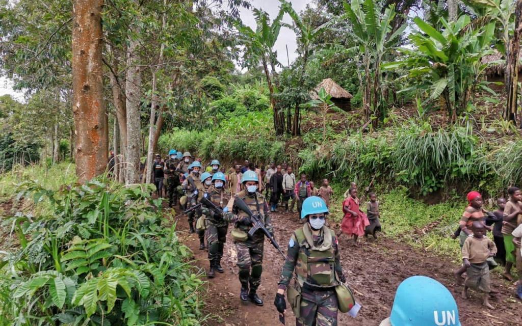 Maintien de la paix dans le monde - Les FAR en République Centrafricaine - RCA (MINUSCA) - Page 20 Eyrfyl11