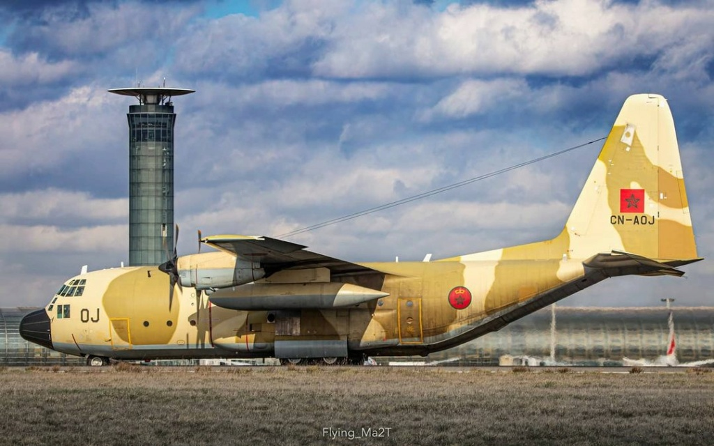 FRA: Photos d'avions de transport - Page 42 Flying10