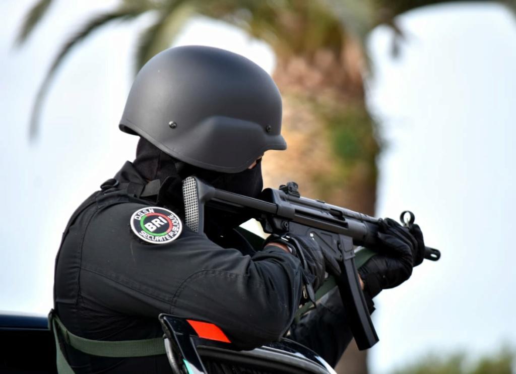 Moroccan Special Forces/Forces spéciales marocaines  :Videos et Photos : BCIJ, Gendarmerie Royale ,  - Page 17 Img_2041